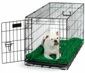 Crate training is a very effective way to establish proper behavior patterns.