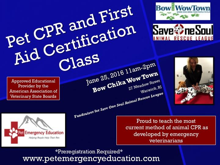 Dogcat Cpr First Aid Certification Class Save One Soul Animal