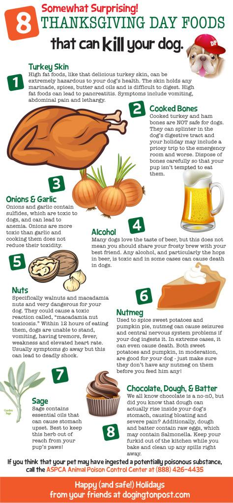 Thanksgiving Foods that are harmful to dogs