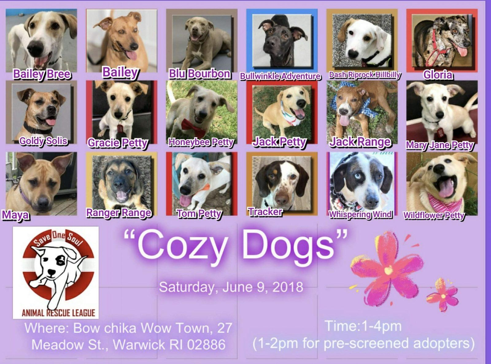 Cozy dogs adoption event save one soul animal rescue league public dogs are welcomed into the event space for meetngreets by appointment only m4hsunfo