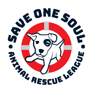 SOS Logo 2019 circle logo clear background