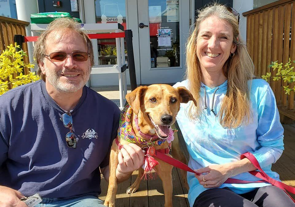 HAPPY TAILS: BAILEY