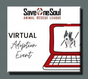 VIRTUAL ADOPTION EVENT!!! @ SOS ZOOM