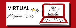 Virtual Adoption Event Image